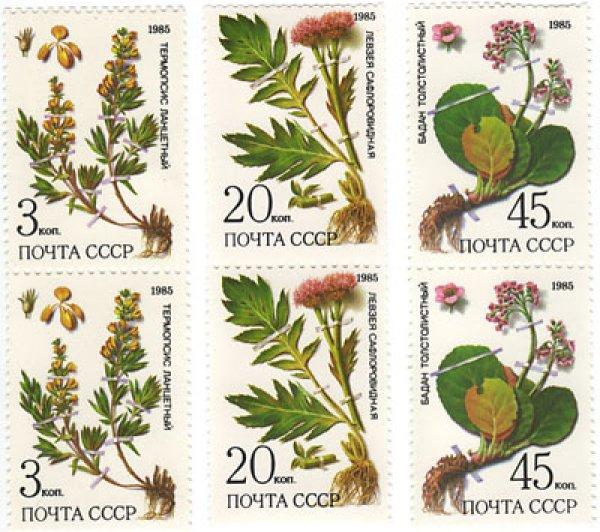 画像1: 植物切手 3種6枚セット  (1)